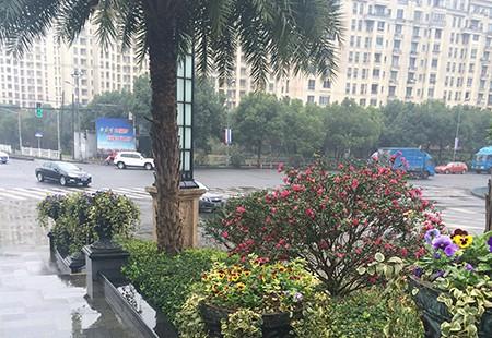 上海-星河灣