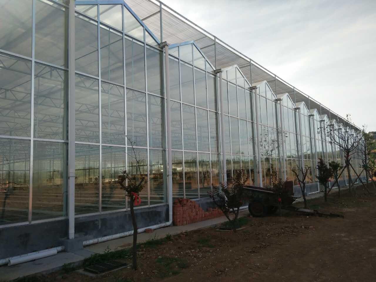 玻璃温室生态餐厅
