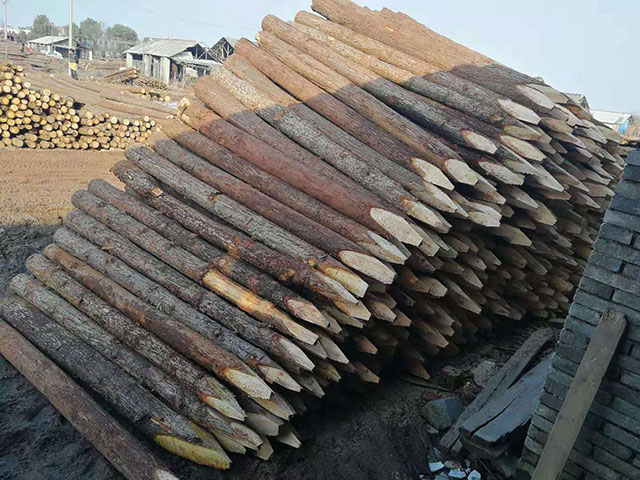 桩木加工厂