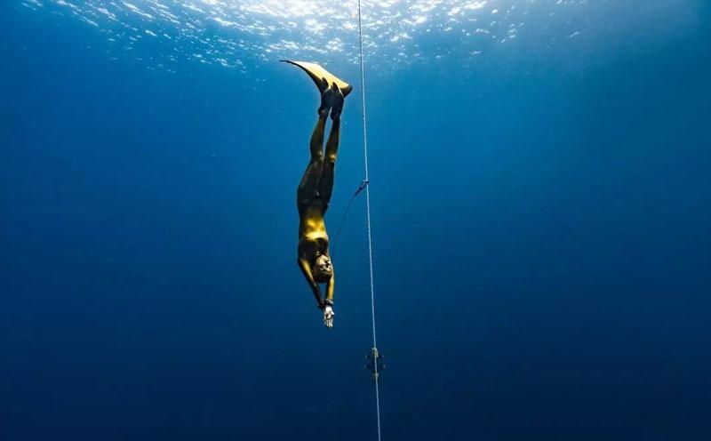 自由潜水的十大益处