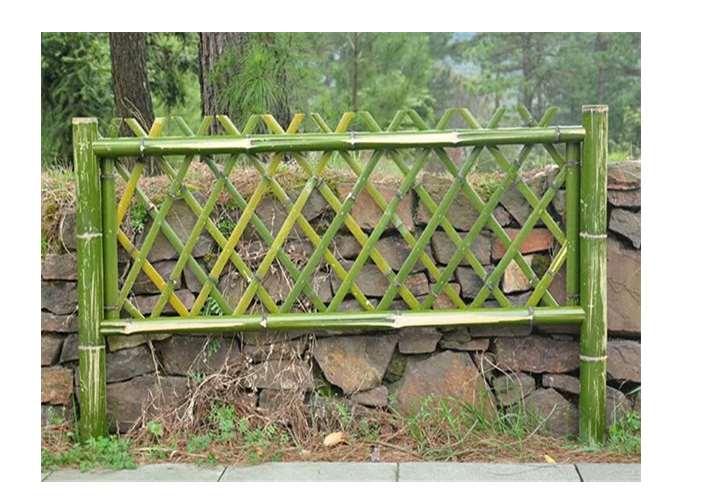 用竹篱笆做成围墙能有几年寿命