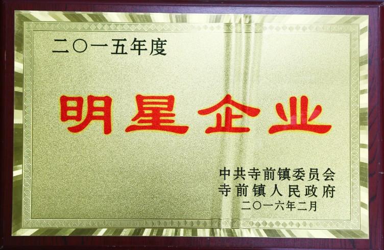 太湖皖松获得2015年度明星企业