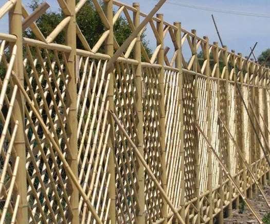 园林竹篱笆的优点