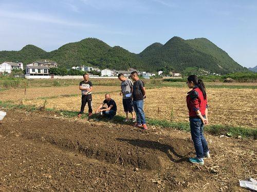贵州兴义市万峰林花海项目