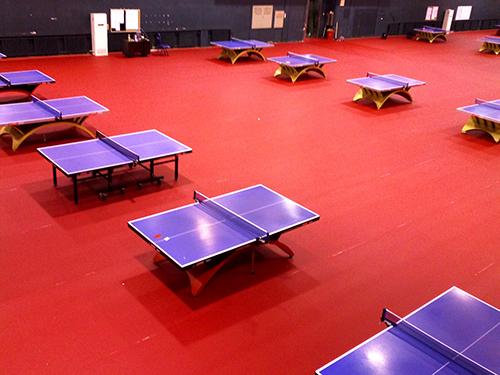健身房地胶垫中的乒乓球专用地胶产品介绍
