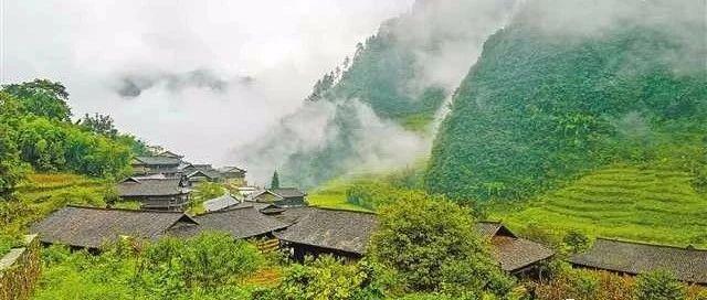 湖南湘西建设武陵山区珍稀乡土树种种质资源保存库