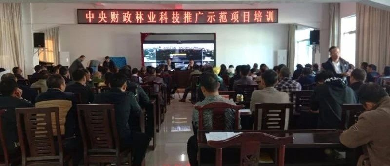 云南富宁县举办中央财政林业科技推广示范项目技术培训