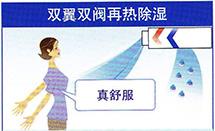 大金家庭中央空调-VRV S系列