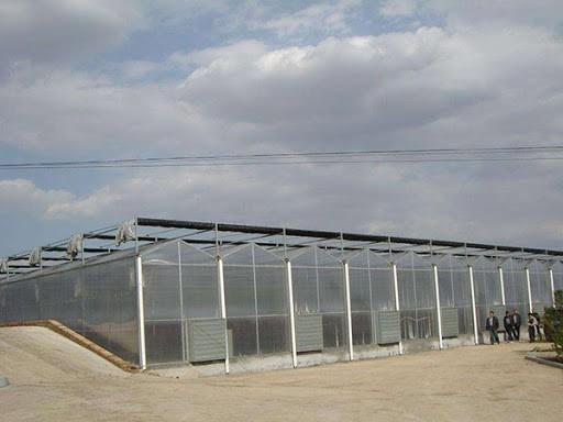 阳光板温室大棚有什么优点?