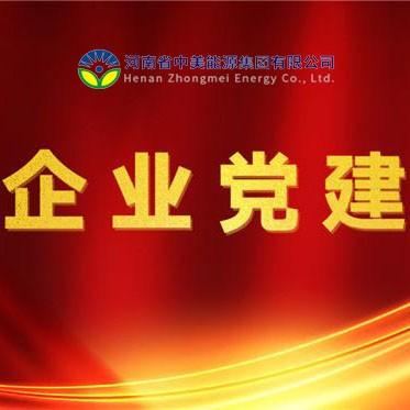 党旗飘飘风帆劲——中美能源集团公司2020年党建工作回顾