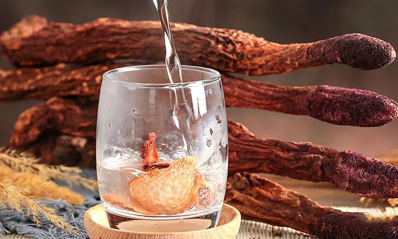 乌海肉苁蓉科学吃法