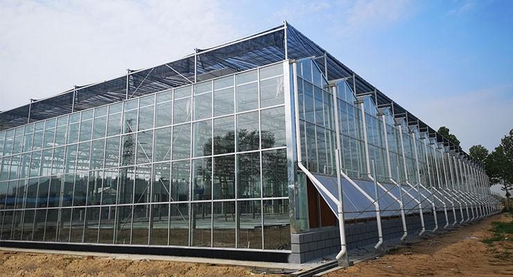 2019新型玻璃温室大棚