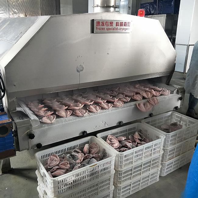 肉类液氮速冻机