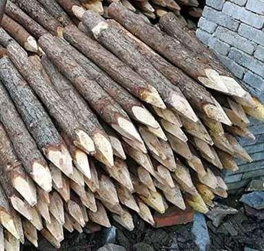 河道松木桩对于河道环境的保护作用不可忽视