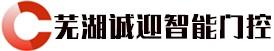 芜湖诚迎智能门控科技有限公司