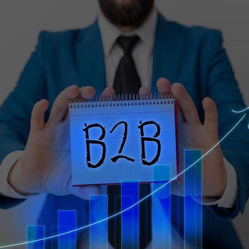 B2B贵阳网站建设电子商务是什么?