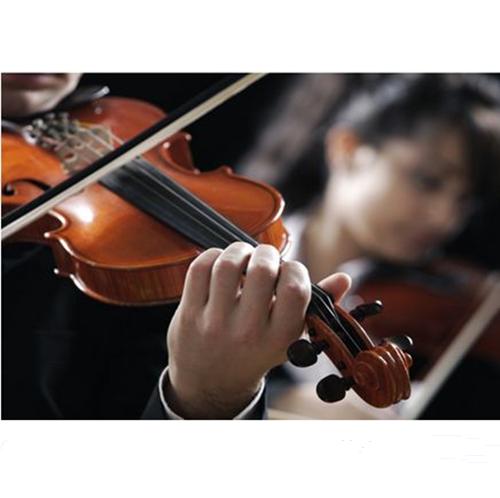 海口小提琴培训课程