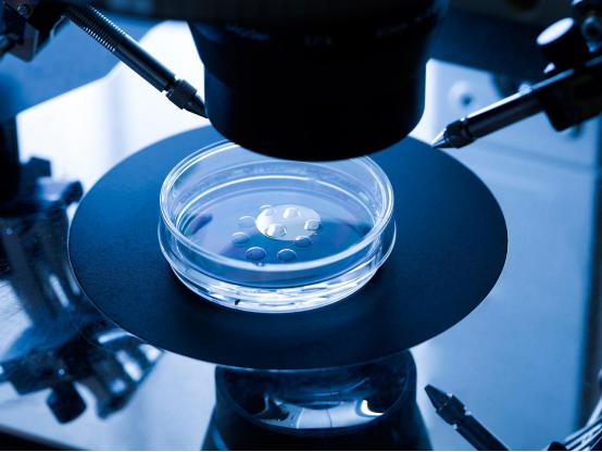 试管婴儿取卵手术真实的全过程(附图)