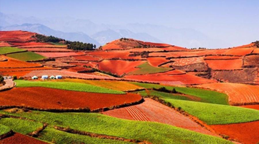 2020农村土地承包经营合同管理新政:具体有哪些新变化?