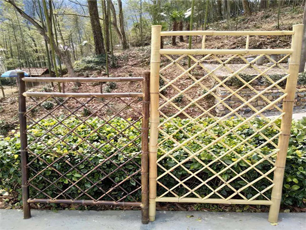 竹籬笆圍欄
