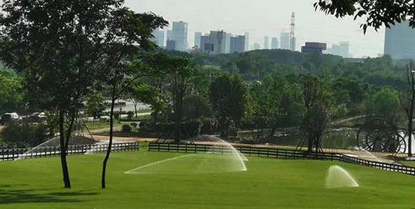 校园园林绿化工程如何管理