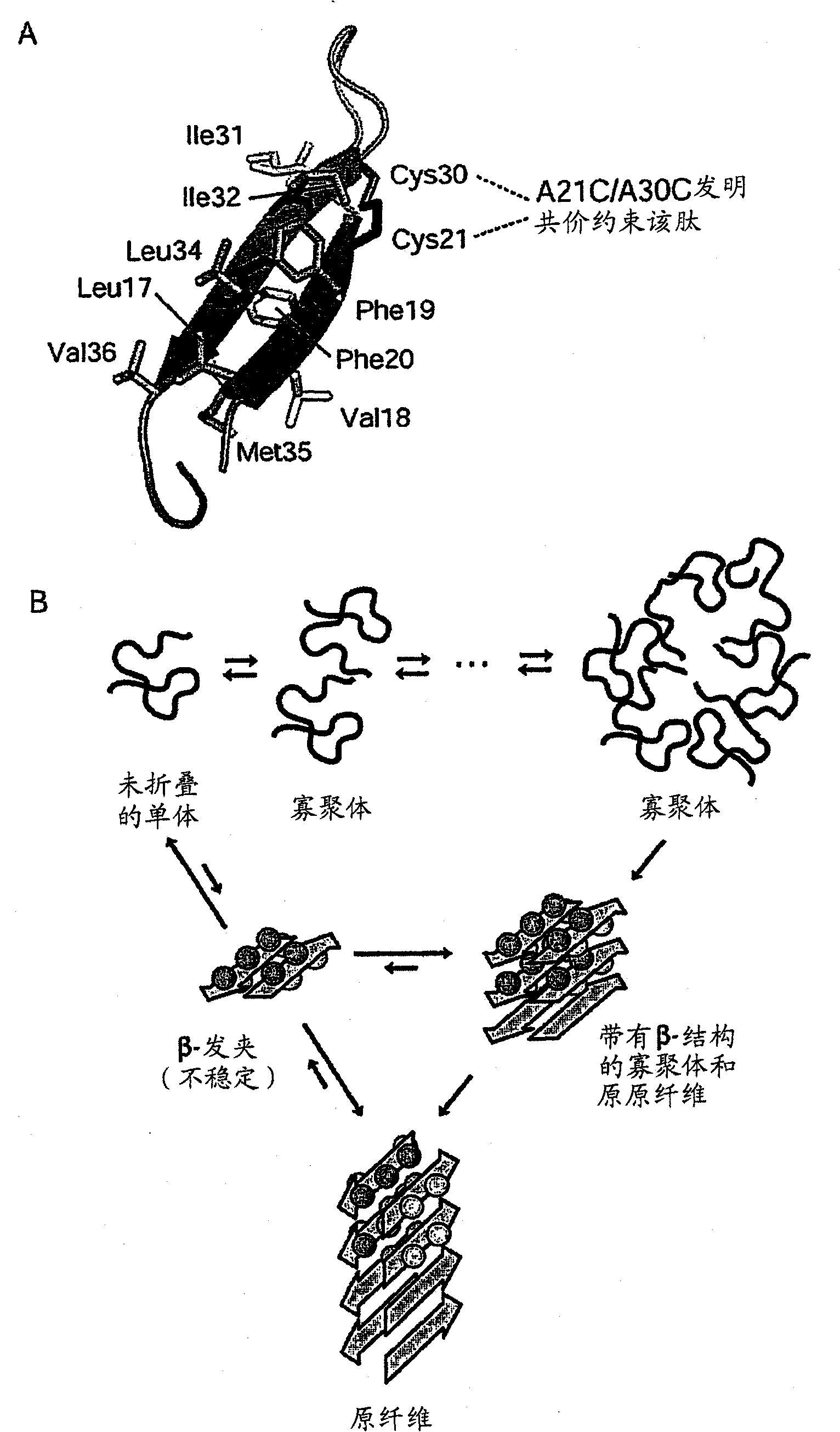 科学家发现酸性环境促进β淀粉样蛋白寡聚体的形成