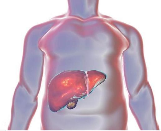 """""""自体外周血干细胞移植联合人工肝"""":开辟肝衰竭新途径"""