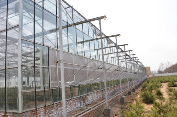 玻璃温室大棚设计图纸造价解析,玻璃温室大棚造价