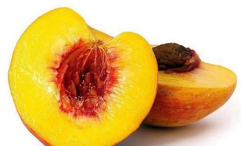 黄金蜜桃4号 种苗