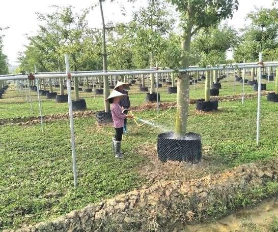 智能灌溉应用情况介绍