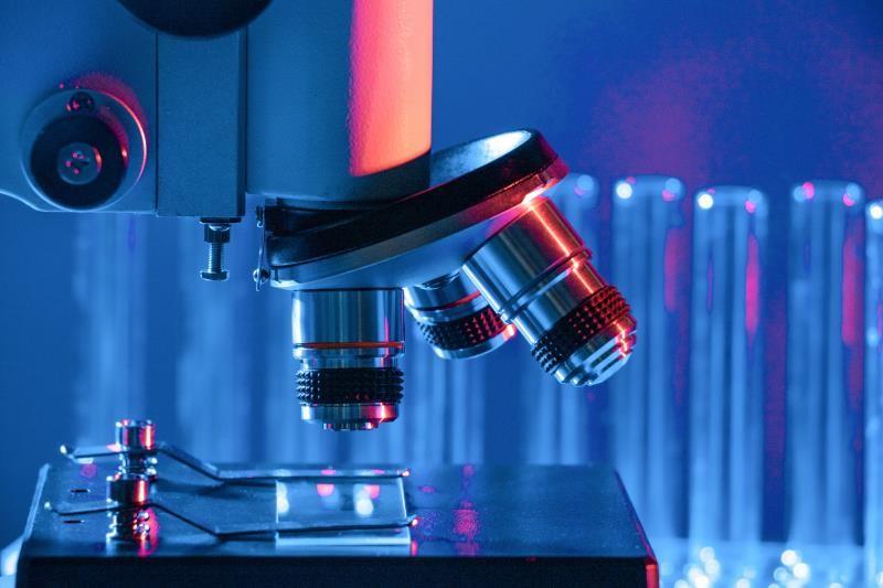 干细胞调理其他疾病