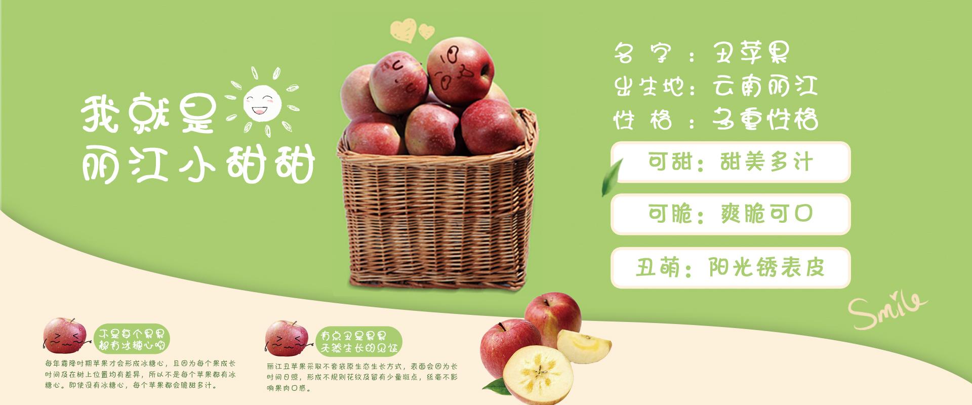 田家庄果业包装设计