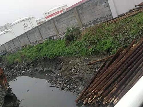 河道护坡木桩批发