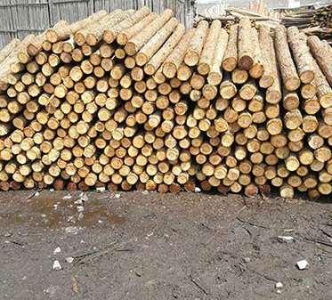 旧建筑杉木桩老化后的化学变化