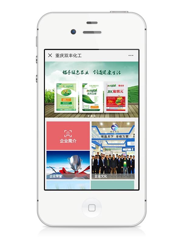 重庆双丰化工有限公司