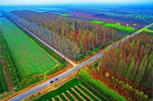 浙江省林业局开展林业贷款贴息和储备林项目管理培训