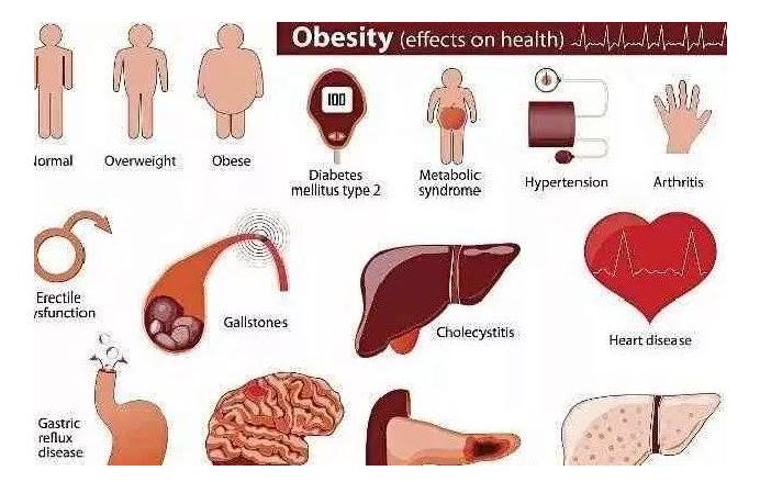 专能干细胞,间充质干细胞可以有效糖尿病及糖尿病创伤!糖尿病患者的福音