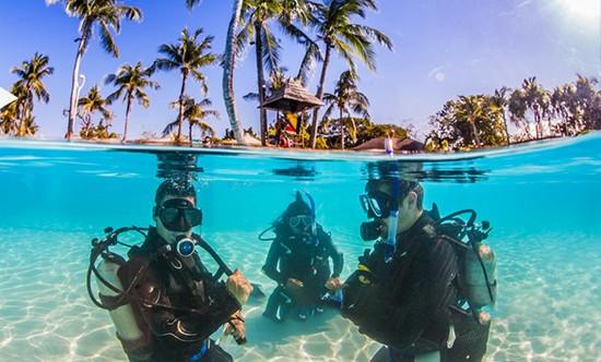 潜水课程包含