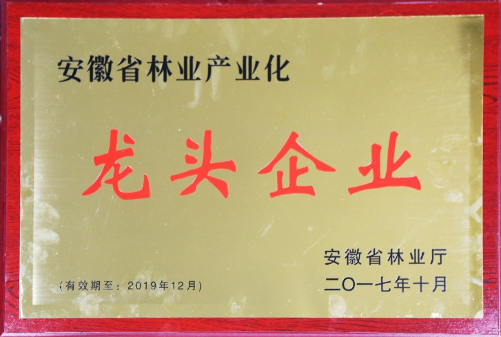 太湖皖松市级龙头企业