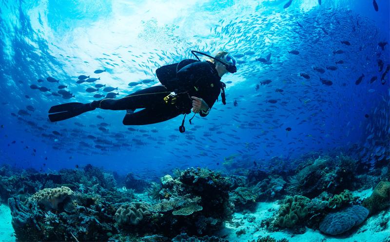 潜水的好处有那么多,快来普吉岛潜水吧!