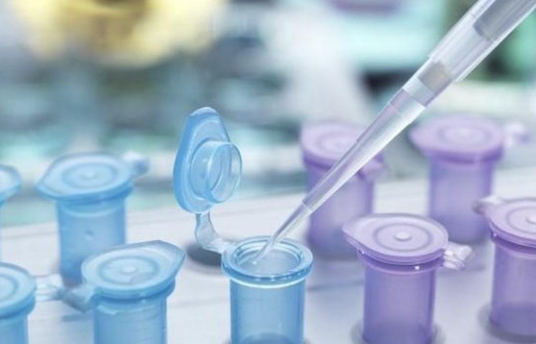 中科西部干细胞研究院:干细胞在实际临床中的作用