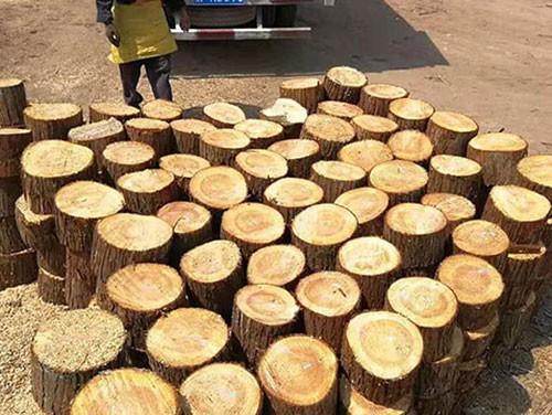 江苏短木桩供应