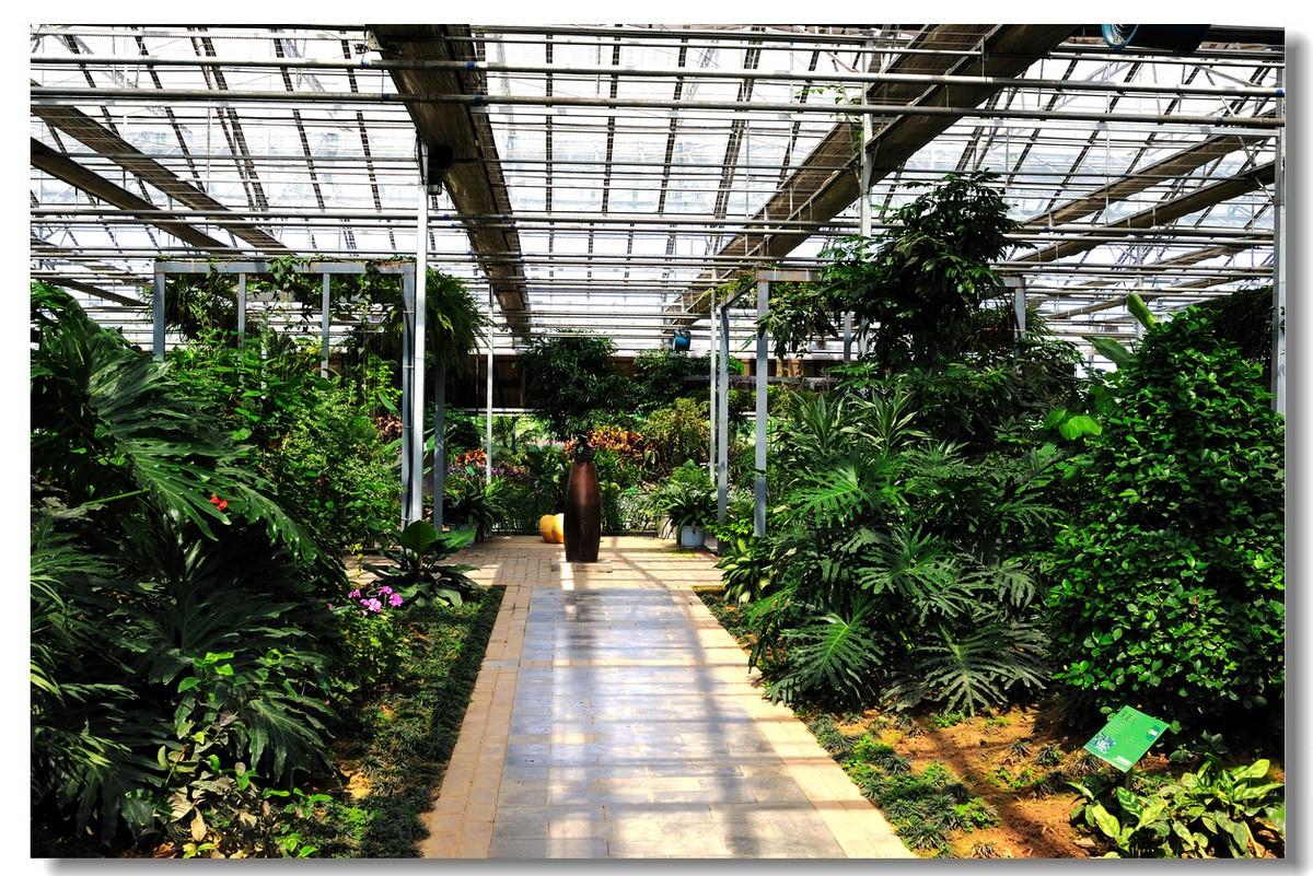 采用玻璃温室种植有什么优势?