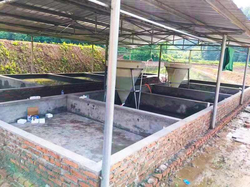 学员的养殖基地