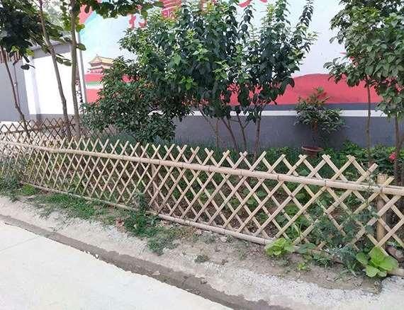 竹篱笆的安装与维护须知