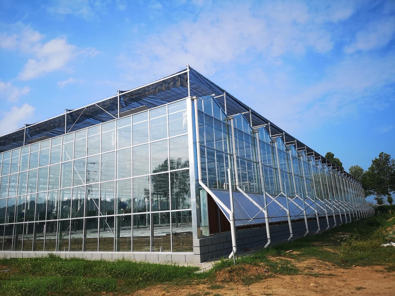 连栋玻璃智能温室在保温性上有哪些有效措施