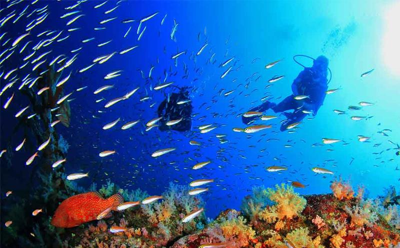 在普吉岛浮潜与潜水之间的区别