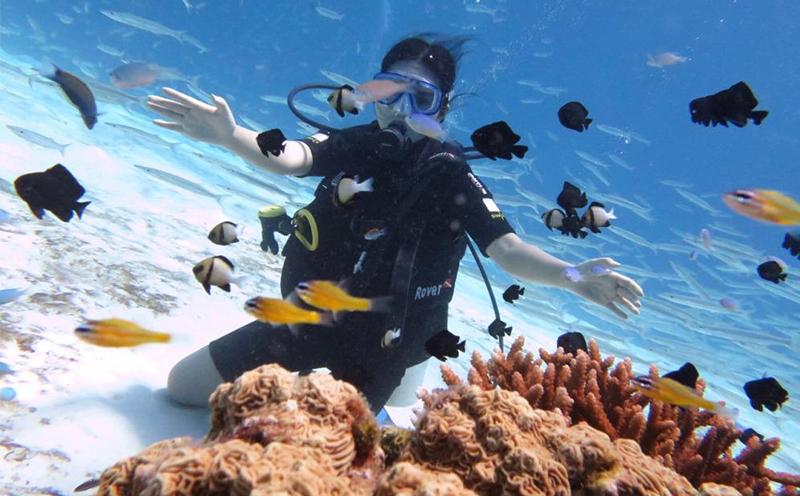去普吉岛如何体验潜水?给你这篇普吉岛潜水进阶攻略!