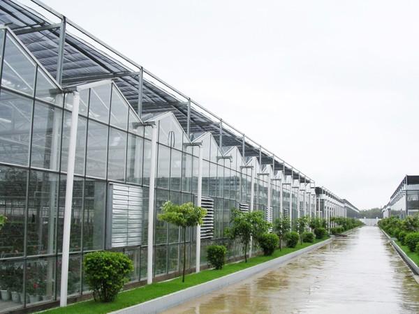 拒绝高大上价格亲民的无土栽培基质如何选择,蔬菜大棚如何种植