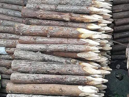宣城宏文木业有限公司专业销售绿化支撑杆